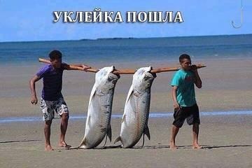 http://s4.uploads.ru/t/1zCJr.jpg