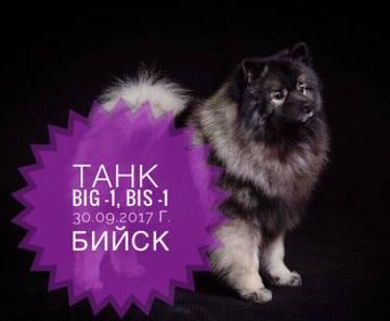 http://s4.uploads.ru/t/2FUua.jpg