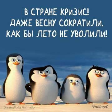 http://s4.uploads.ru/t/2OhZH.jpg
