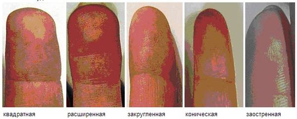 http://s4.uploads.ru/t/5Wiaq.jpg