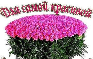 http://s4.uploads.ru/t/5rTpu.jpg
