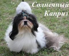 http://s4.uploads.ru/t/5ypwq.jpg