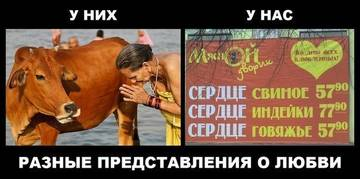 http://s4.uploads.ru/t/638Ao.jpg