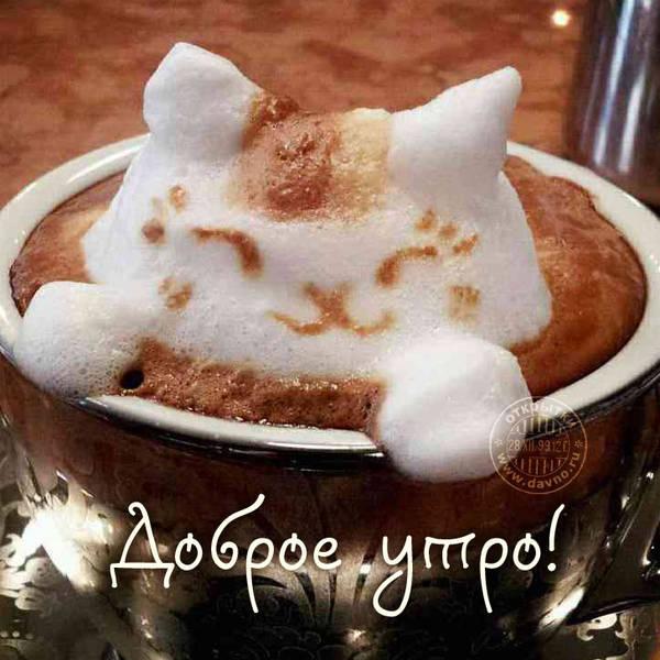 http://s4.uploads.ru/t/698nh.jpg