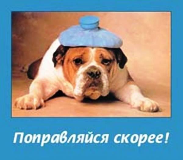 http://s4.uploads.ru/t/6OBwq.jpg