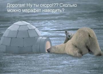 http://s4.uploads.ru/t/6TG9t.jpg