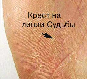 http://s4.uploads.ru/t/6V3UX.jpg