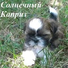http://s4.uploads.ru/t/6yMa1.jpg