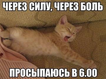 http://s4.uploads.ru/t/7SrPO.jpg