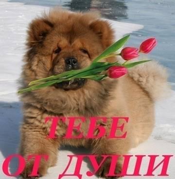 http://s4.uploads.ru/t/7omID.jpg