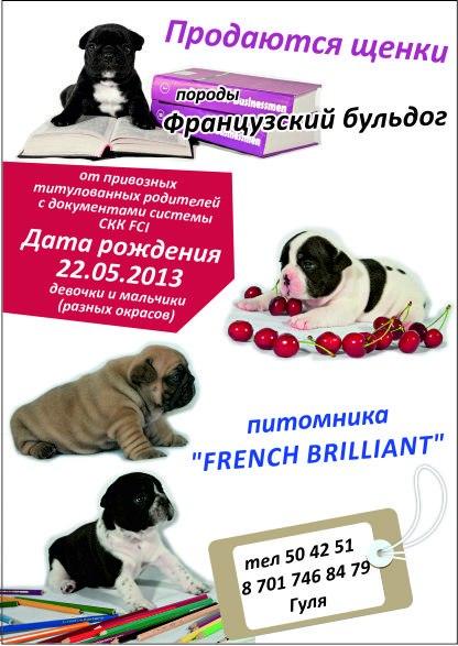 http://s4.uploads.ru/t/7yUsq.jpg