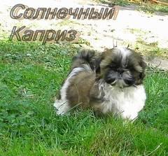 http://s4.uploads.ru/t/8kay0.jpg