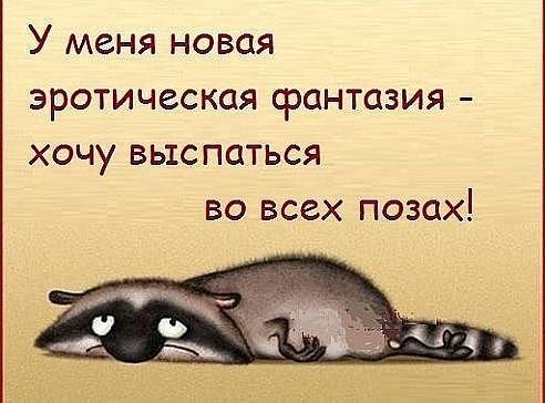 http://s4.uploads.ru/t/A3nLb.jpg
