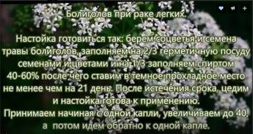 http://s4.uploads.ru/t/BVqrD.jpg