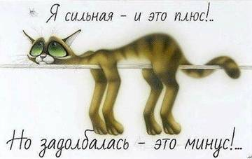 http://s4.uploads.ru/t/BfzeI.jpg