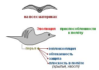 http://s4.uploads.ru/t/CBcIV.png