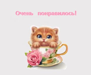 http://s4.uploads.ru/t/CGws8.png