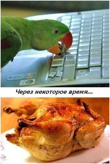 http://s4.uploads.ru/t/D9qht.jpg