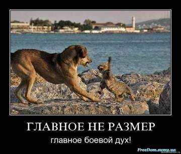 http://s4.uploads.ru/t/EIOzM.jpg