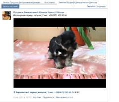 http://s4.uploads.ru/t/FNqQR.png
