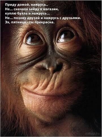 http://s4.uploads.ru/t/FoPci.jpg