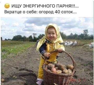 http://s4.uploads.ru/t/FubyU.jpg