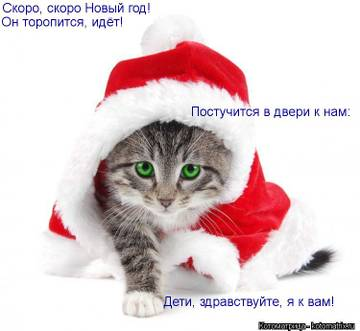http://s4.uploads.ru/t/GTack.jpg