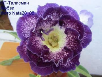 http://s4.uploads.ru/t/GfAdI.jpg