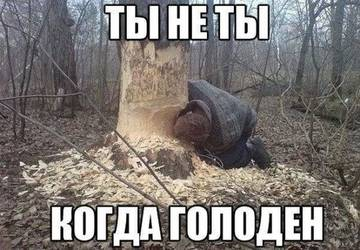http://s4.uploads.ru/t/GjVYH.jpg