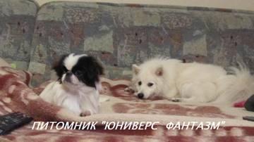 http://s4.uploads.ru/t/GzARN.jpg