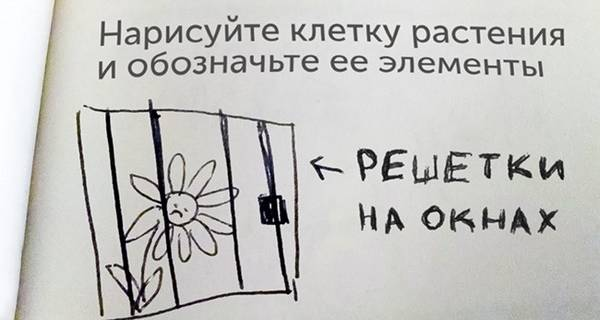 http://s4.uploads.ru/t/Hbl7G.jpg