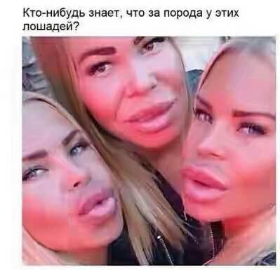 http://s4.uploads.ru/t/I6Wcz.jpg
