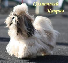 http://s4.uploads.ru/t/I87E3.jpg