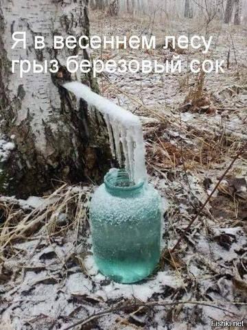 http://s4.uploads.ru/t/J3rSH.jpg