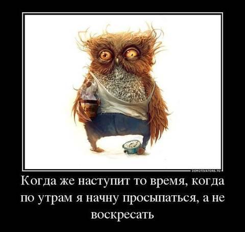 http://s4.uploads.ru/t/Jzw8D.jpg