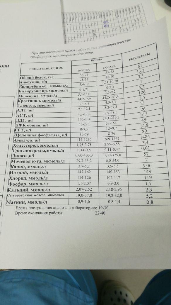 http://s4.uploads.ru/t/K7fbH.jpg