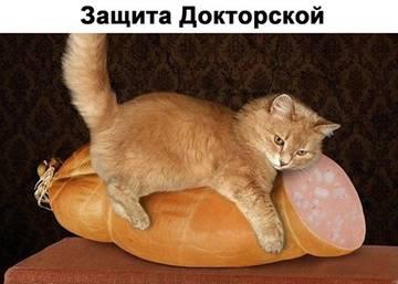 http://s4.uploads.ru/t/KEBIt.jpg