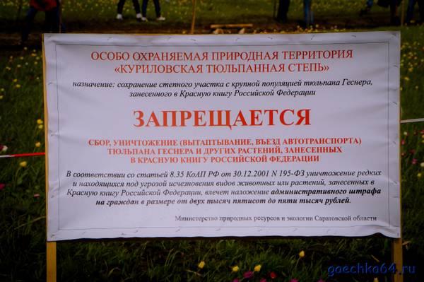 http://s4.uploads.ru/t/Kdovk.jpg