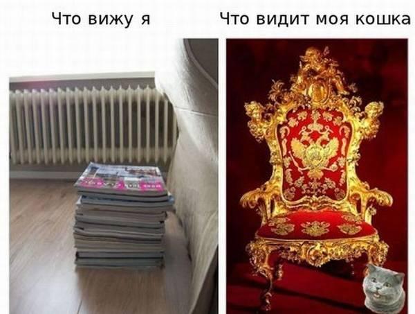 http://s4.uploads.ru/t/Kw6YA.jpg