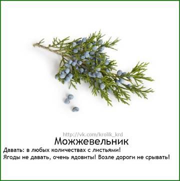 http://s4.uploads.ru/t/Kzdrh.jpg