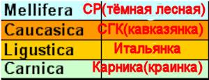 http://s4.uploads.ru/t/LUGPr.jpg