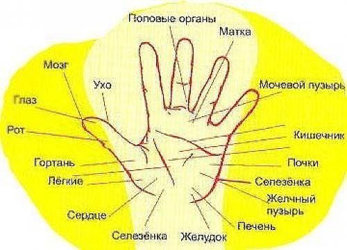 http://s4.uploads.ru/t/M2I7h.jpg