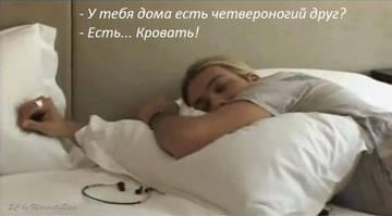 http://s4.uploads.ru/t/M3D0l.jpg