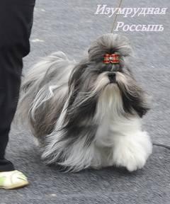 http://s4.uploads.ru/t/Mb9rl.jpg