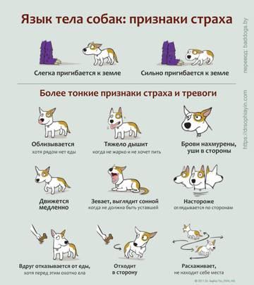http://s4.uploads.ru/t/N8zyH.jpg