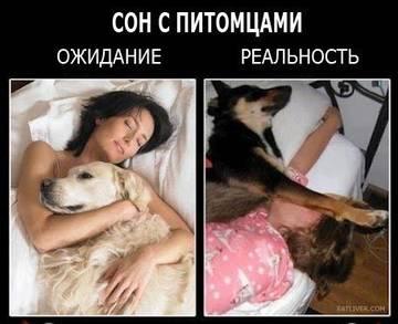 http://s4.uploads.ru/t/NdP2C.jpg