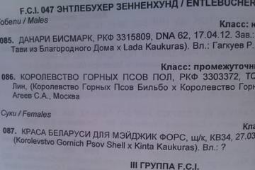http://s4.uploads.ru/t/OkSxd.jpg