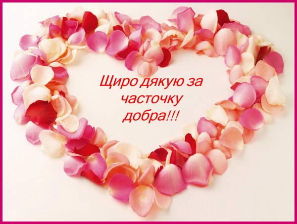 http://s4.uploads.ru/t/P5Nwk.jpg
