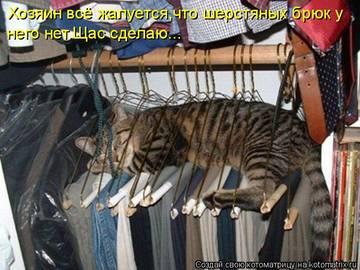 http://s4.uploads.ru/t/PI0Kg.jpg