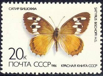 http://s4.uploads.ru/t/PQiax.jpg